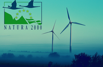 Natura 2000 and Wind Energy Projects